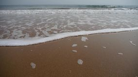 潮汐的Timelapse,在金黄海滩的海浪 股票录像