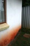 潮湿的外部上升的墙壁 免版税库存照片
