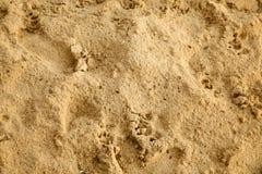 潮湿的沙子 免版税图库摄影