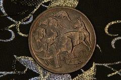 澳大利亚人的特写镜头1美元硬币 库存照片
