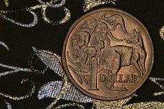澳大利亚人的特写镜头1美元硬币 库存图片