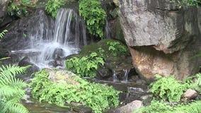 澳大利亚人铁线蕨以为特色在这个人做在一个环境美化的日本庭院内的瀑布在澳大利亚 股票录像