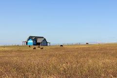 澳大利亚农场土地 库存图片