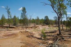 澳大利亚平原以洪水土壤损伤 免版税库存照片