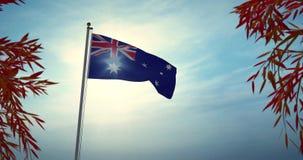 澳大利亚挥舞国旗是澳大利亚爱国主义的国家象征–30帧/秒4k视频 皇族释放例证