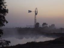 澳大利亚日雾 库存照片