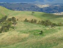 澳大利亚横向的绵延山 库存图片