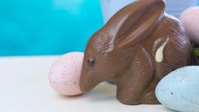 澳大利亚牛奶巧克力Bilby复活节彩蛋用在巢,移动式摄影车的鸡蛋 股票录像