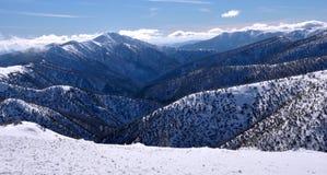 澳大利亚的阿尔卑斯 免版税库存照片