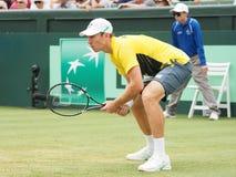 澳大利亚网球员约翰凝视在戴维斯杯双期间布赖恩兄弟 免版税库存照片