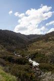 澳大利亚高山小河 免版税库存图片