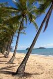 澳大利亚,昆士兰,棕榈小海湾,棕榈滩 图库摄影