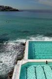 澳大利亚:Bondi游泳池妇女 库存图片