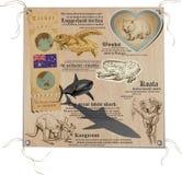 澳大利亚-生活的图片,动物 免版税库存照片