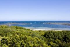 澳洲。 维多利亚。 Mornington半岛。 碎片 免版税库存照片