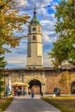 澳洲市时钟大厅找出珀斯西部塔的城镇 图库摄影