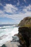澳洲新堡 免版税库存图片