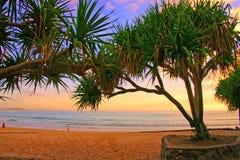 澳洲海岸阳光 库存照片