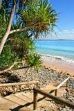 澳洲海岸阳光 库存图片