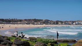 澳洲海滩bondi悉尼 影视素材