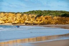 澳洲海滩torquay 免版税库存照片