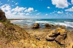 澳洲海滩torquay 库存图片