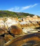 澳洲海角conran岩石三文鱼 免版税库存照片