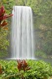 澳洲美丽的热带瀑布 免版税库存照片