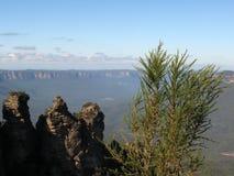 澳洲蓝色山国家公园科教文组织 库存图片