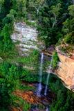 澳洲蓝色山nsw 免版税库存图片