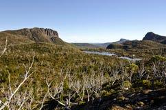 澳洲elysia迷宫湖塔斯马尼亚岛 库存照片