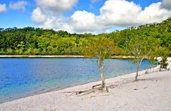 澳洲fraser海岛 图库摄影