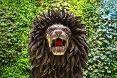 澳门- 2015年11月20日:米高梅赌博娱乐场狮子  图库摄影