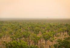 澳洲内地的边缘 库存照片