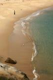 澳洲海湾海滩植物学含沙悉尼 图库摄影
