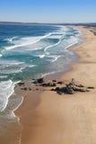 澳洲海滩新堡红头发人 免版税库存图片
