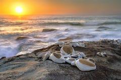 澳洲海滩bondi 免版税库存图片