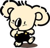 澳洲熊被采取的考拉照片 免版税库存照片