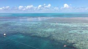 澳洲障碍极大的礁石 股票录像