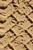 澳洲fraser海岛 免版税图库摄影