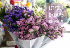 激动人心的正面行情`让您的在五颜六色的statice的梦想开花`开花背景 库存照片