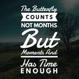 激动人心的行情蝴蝶计数不是几个月,而是片刻并且有足够时间 皇族释放例证