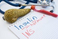 激素胰岛素概念照片 有胰岛素激素INS的题字的笔记本在有血液的, a试管旁边说谎 免版税库存照片