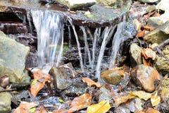 瀑布、岩石和叶子关闭  免版税库存图片