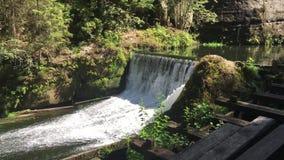 瀑布、捷克瑞士国立公园、大岩石和河, 股票视频