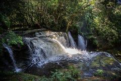 瀑布亚马逊雨林 库存图片