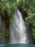 瀑布原野 库存照片