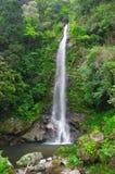 瀑布叫Tarumae Taki 库存图片
