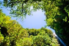 瀑布和天空在森林里,马德拉岛,葡萄牙 图库摄影