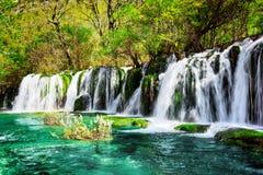 瀑布和天蓝色湖用水晶水在绿色森林中 库存照片